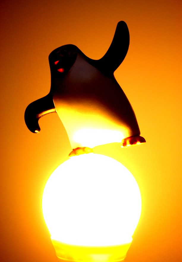 The light looks warm and nice, but the penguin is now even darker than before.
