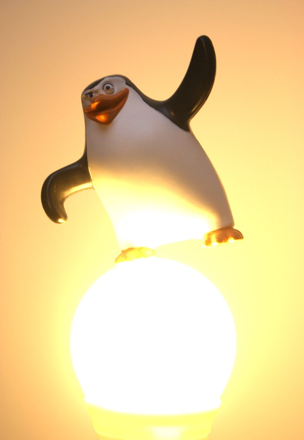 Penguin looks good. But now the light bulb is too bright.